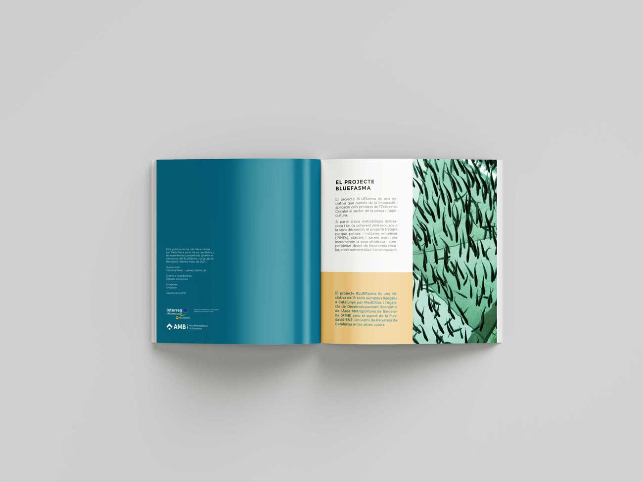 bluefasma living labs booklet sample
